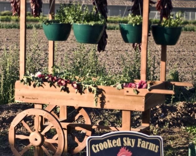 _artichoke-roast-festival-crooked-sky-farms-produce-cart-133318342120.jpg